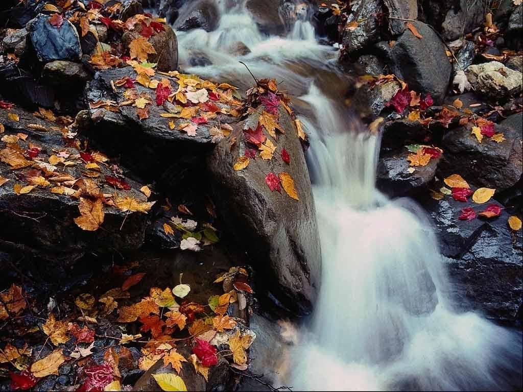 Фотографии природных пейзажей обои